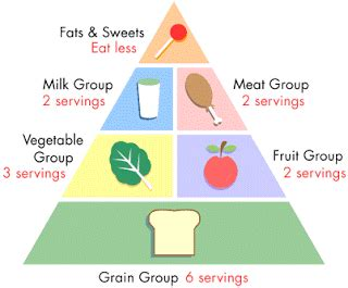 healthy balanced diet essay